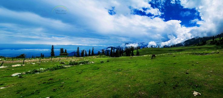 BlogeGulmarg_Panorama1 copy.jpg