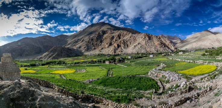 Leh_day_2 (1 of 1)-123.jpg