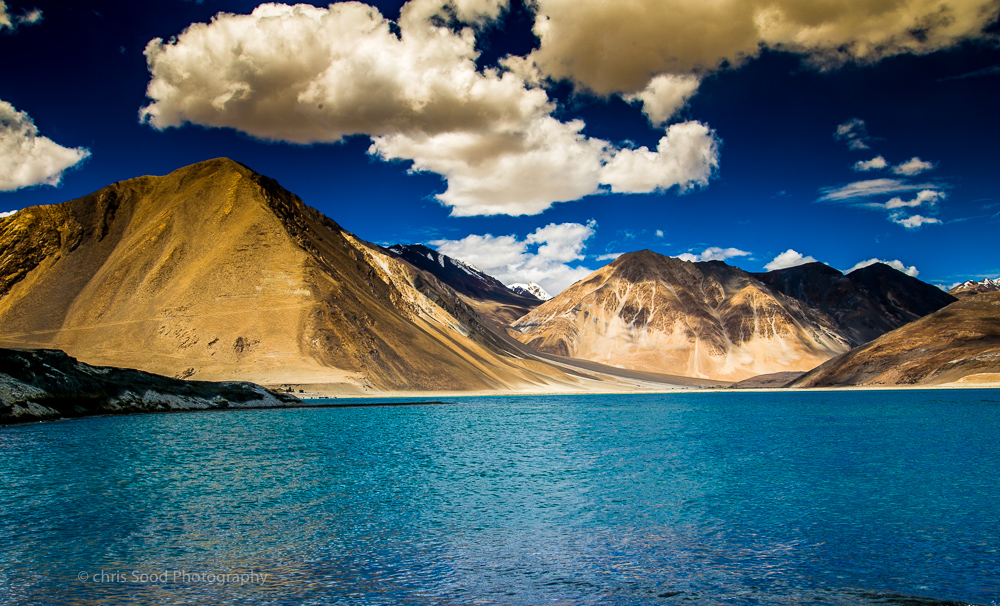 Leh_day_2 (1 of 1)-49.jpg
