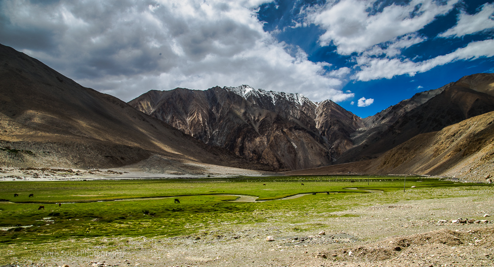 Leh_day_2 (1 of 1)-88.jpg