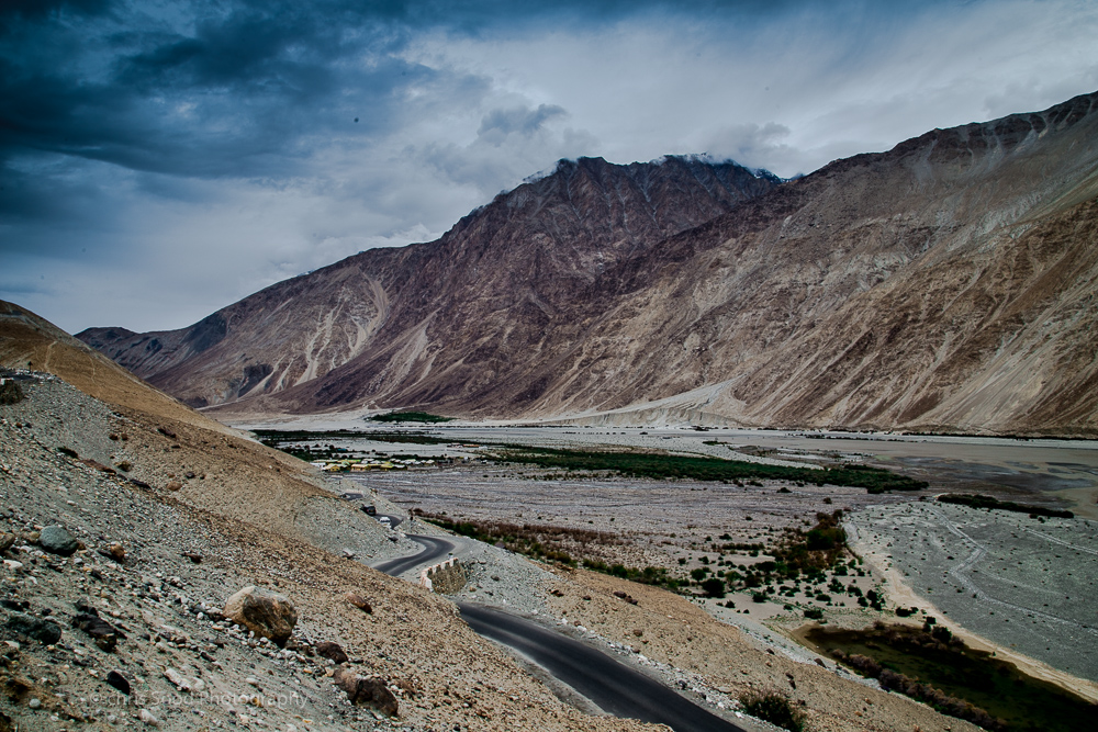Day3 Nubra (1 of 1)-19.jpg