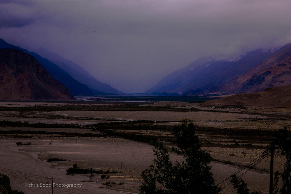 Day3 Nubra (1 of 1)-24.jpg