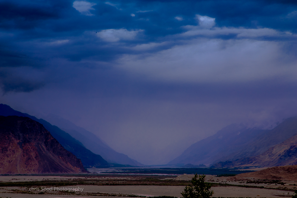 Day3 Nubra (1 of 1)-25.jpg
