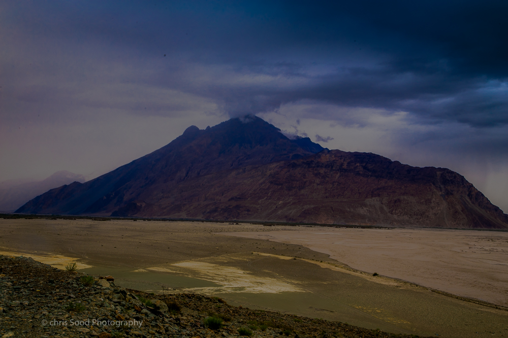 Day3 Nubra (1 of 1)-28.jpg