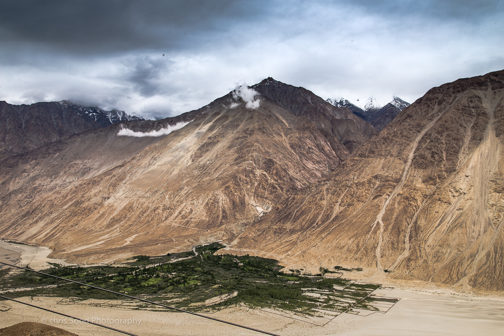 Day3 Nubra (1 of 1)-97.jpg