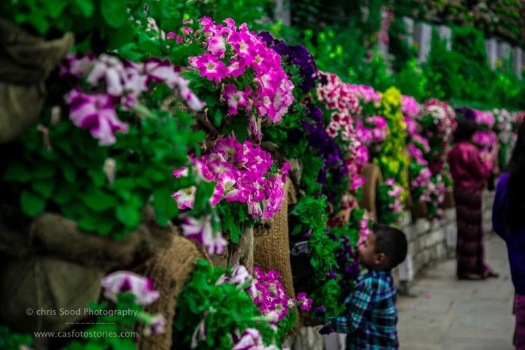 Bhutan Blog  (1 of 1)-48.jpg