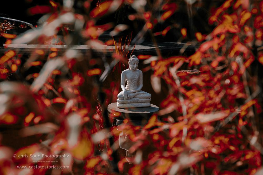 Bhutan Blog  (1 of 1)-94.jpg