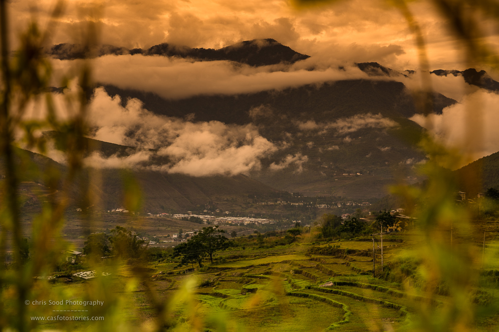 Punakha Blog  (1 of 1)-156.jpg
