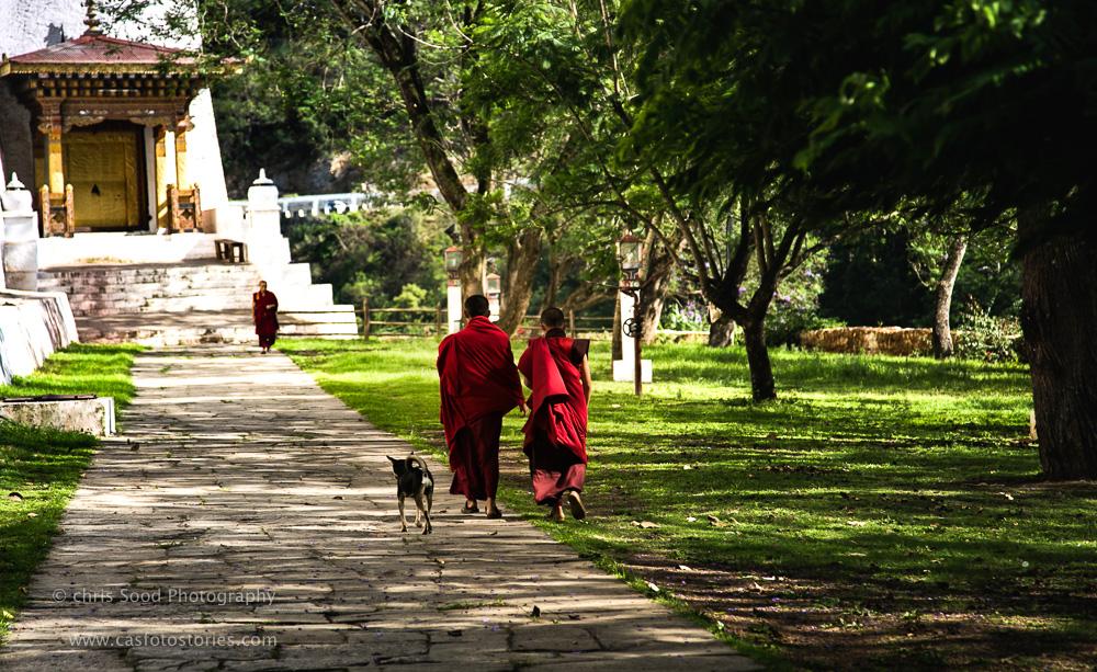 Punakha Blog  (1 of 1)-31.jpg