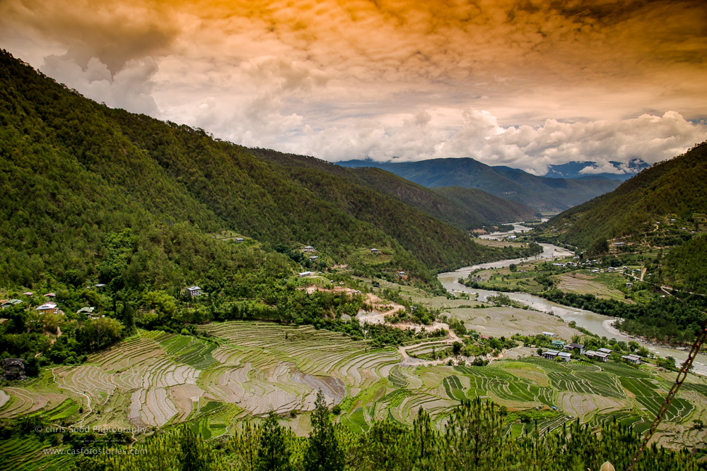 Punakha Blog  (1 of 1)-67.jpg