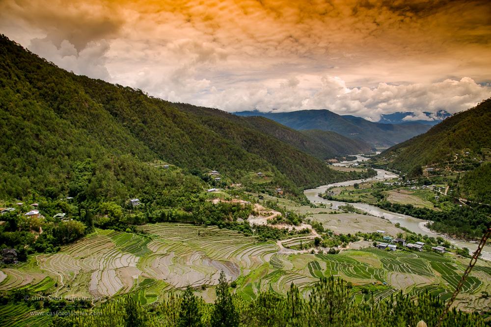 Punakha Blog  (1 of 1)-67.jpg
