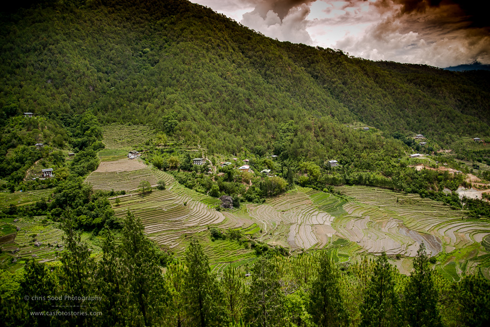 Punakha Blog  (1 of 1)-68.jpg