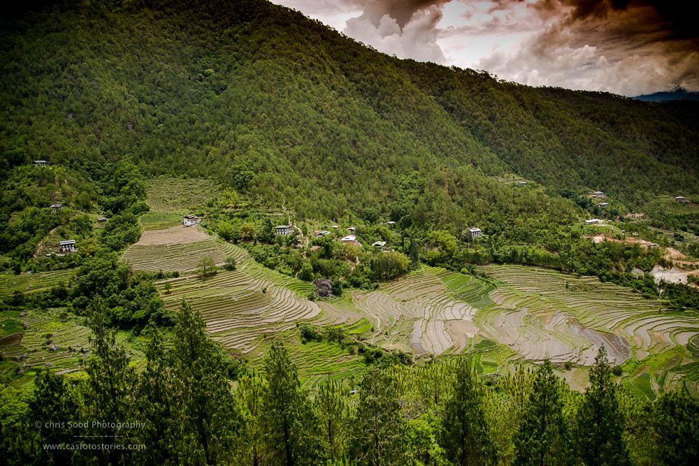 Punakha Blog  (1 of 1)-68.jpg