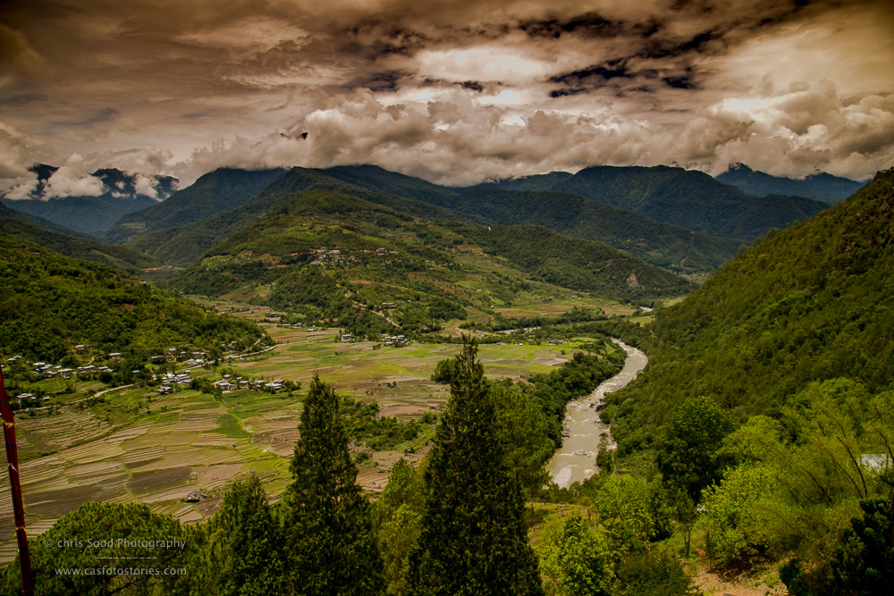 Punakha Blog  (1 of 1)-70.jpg