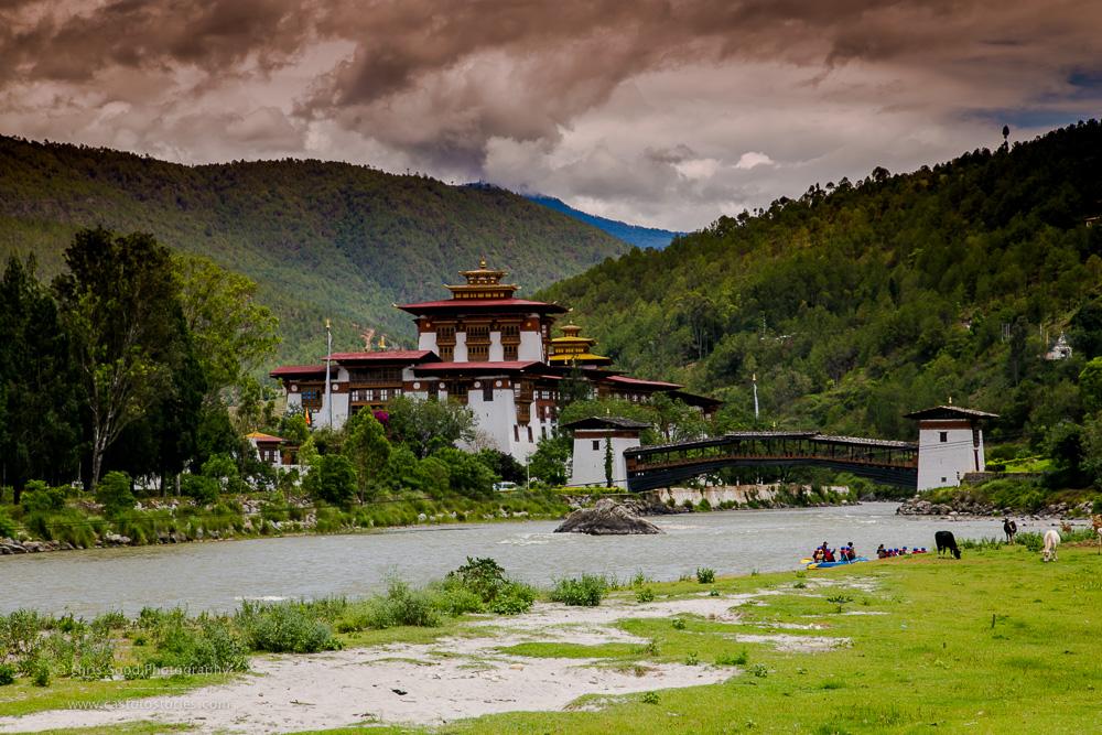 Punakha Blog  (1 of 1)-79.jpg